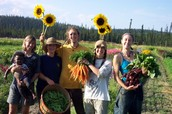 History of Community Supported Agriculture: