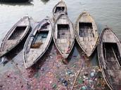 Pollution Near Boats