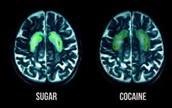 What is SOOOO Addictive about Sugar???