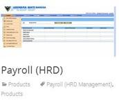Payroll (HRD)