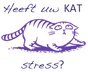 Wat is nou de reden voor stress?