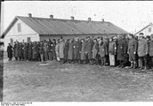 בקרוב כל היהודים התכנסו במחנות