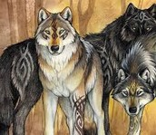 Fire and Ice the Wolf Pack