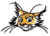 My team logo