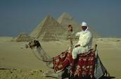Egypts transportation