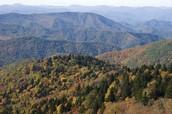 appalachian mountains are very beautiful.