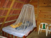 Bed nets: keeps mosquitoes out