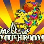 Mellow Mushroom Art