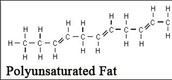 Polyunsaturated Fats