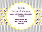 Top In Personal Volume