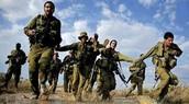 מימוש הרעיון בישראל כיום