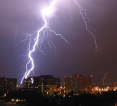 Why Lightning Is So Poplular In Florida