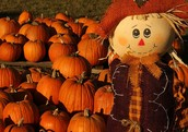 Decorate Pumpkins and Build Scarecrows