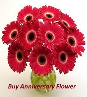 Entertainment of excellent day constructs fashionable Buy Anniversary Flower Online