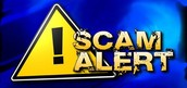 2. Report Online Scams