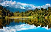 New Zealand 2544