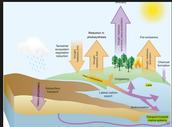 Land of extreme climates
