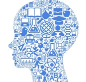 5. Cognitive development