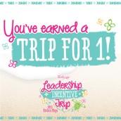 Leadership Incentive Trip
