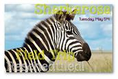 Sharkarosa Field Trip
