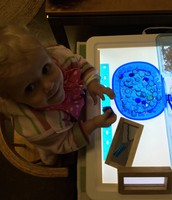 Sophie visits the light table