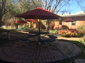 New umbrellas in the courtyard!!!