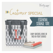 Customer Special - Essential Storage Tote