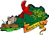 This is Kentucky