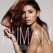 Song #4: Human by Christina Perri