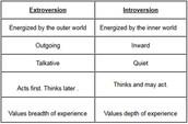 I am an Extrovert