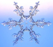 The Art of a Snowflake is Mathematical