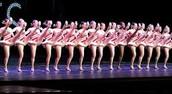 """High Kicks & Precision Dance"" Intensive"