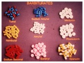 There are about a dozen commonly used barbiturates and sedatives