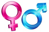 Gender issues/ Gender rules
