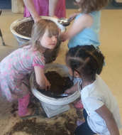 Natural Active Learning