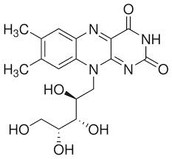 What is so Great about Riboflavin?