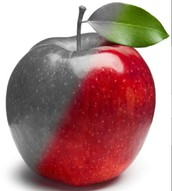 The Giver Apple