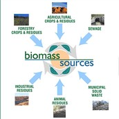 How is biomass formed?