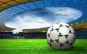 poznati stadion nk Slavonca