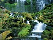 Virginia's waterfalls