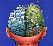 My brain test results
