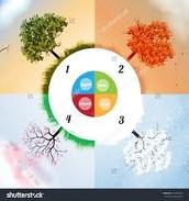 The seasons and the human life