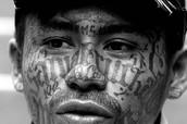 MS13 Gang Member