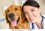 Our Vet Julie and her dog Marco
