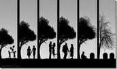 The human life
