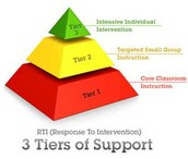 Overview of RTI