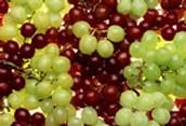 auman vineyards