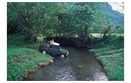 Island Jeep Tour