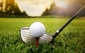 GOLF RESULTS - WOLFE CITY INVITATIONAL