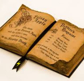 Harry Potter Wand & Spell Book
